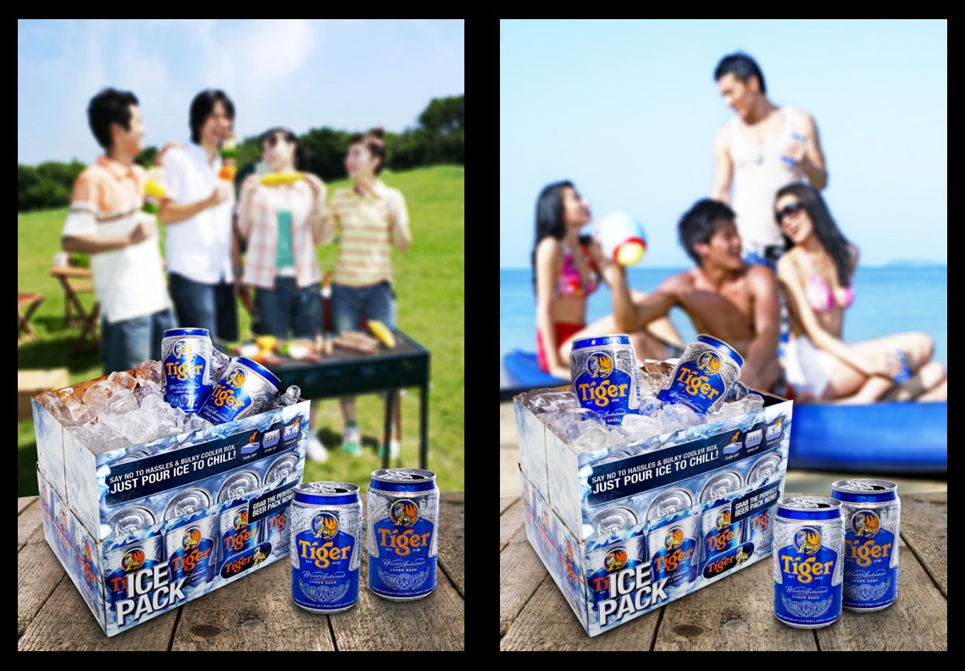 Tiger Beer 12 Can Ice Pack Parties